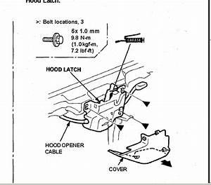 Wiring Diagram Database  2002 Honda Civic Hood Latch Diagram