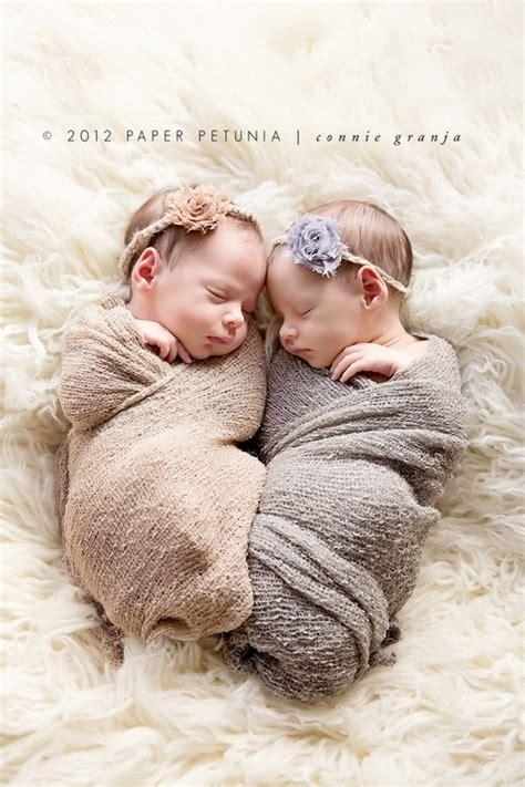 beautiful   newborn twins stylish eve