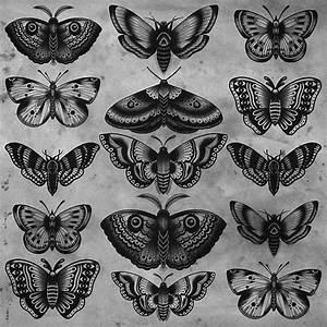 As 20 melhores ideias de Tatuagem mariposa no Pinterest ...