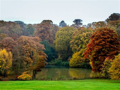 Five Great Autumn Park And Pub Walks In London
