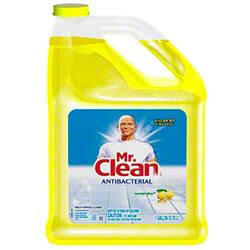 Mr Clean Bathroom Cleaner Msds by P G Mr Clean 174 All Purpose Cleaner 128 Oz Summer Citrus
