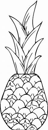 Pineapple Coloring Pages Printable Clipart Clip Drawing Print Apple Pine Teenagers Template Clipartpanda Drawings Colouring Collection Fruit Hawaii Tumblr Clipartix sketch template