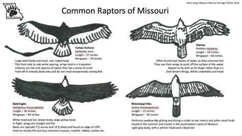 Missouri's Natural Heritage