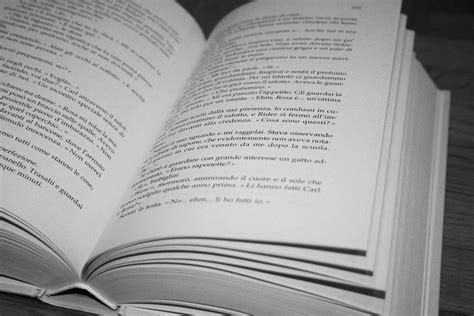 images writing page open book brand pages text