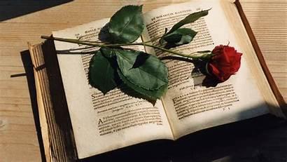 Libri Books Rose Dragging Feet Fiori Puisi