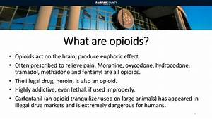 Heroin and Opioids Update: A Community Public Health and ...
