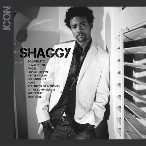 Banging On The Bathroom Floor Song by Shaggy It Wasn T Me Lyrics Genius Lyrics