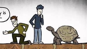 What Is Aging  Phd Comics Animation With Jo U00e3o Pedro De