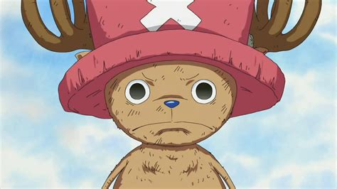 Information About One Piece Chopper Iphone Wallpaper Yousense Info