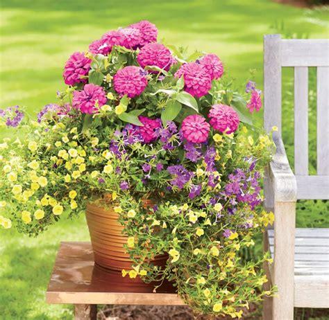 Blumenkübel Bepflanzen Vorschläge blumenk 252 bel bepflanzen vorschl 228 ge home ideen