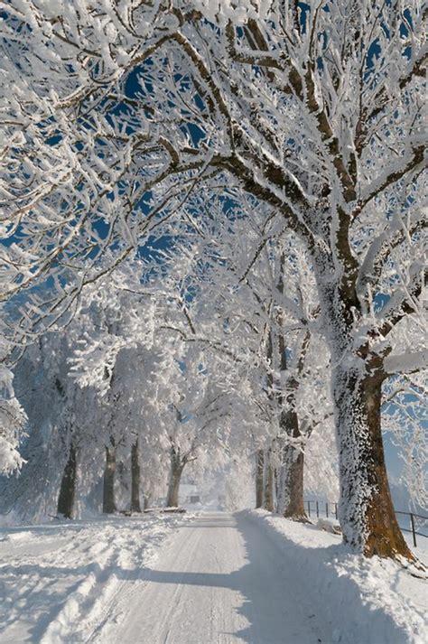 dessin d une chambre en perspective le paysage d 39 hiver en 80 images magnifiques archzine fr