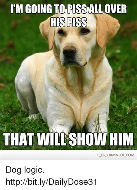 Dog Logic Meme - 25 best memes about tldr and memes tldr and memes