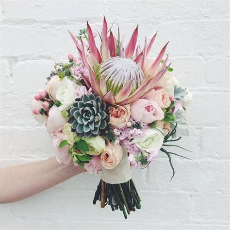 19 Best Protea Wedding Flowers Images On Pinterest