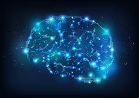 Digital Brain Wallpaper by Brain Anatomy Skull Digital 3 D X Xray