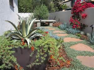 California Landscaping Drought Tolerant Plants