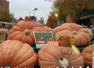 The Circleville Pumpkin Show - OhioWins