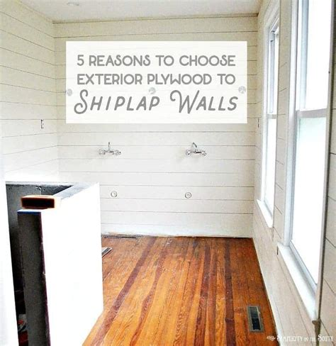 Plywood For Shiplap shiplap walls using plywood 5 reasons to use exterior cdx
