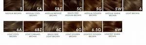 Natural Instincts Hair Dye Color Chart Clairol Natural Instincts 5g Medium Golden Brown Pecan