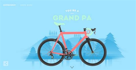 Bicycle Illustrations Celebrate The Different Types Of