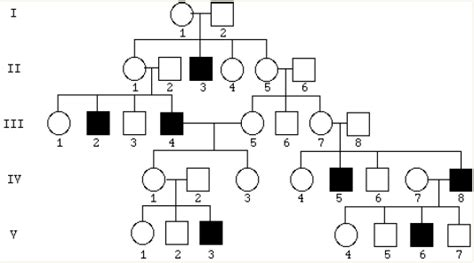 Solved Does The Following Pedigree Depict An Autosomal Re