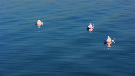 Origami Boat In Water by Concept Of Vacation Rest Origami Boat Floating In Water