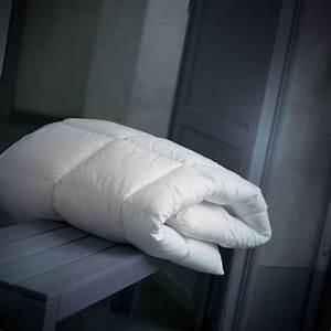Couette D Hiver : couette hiver ~ Preciouscoupons.com Idées de Décoration