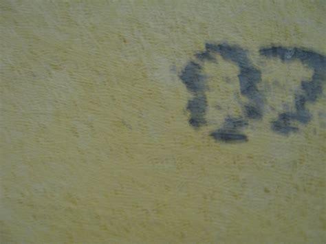 redguard on densguard trap moisture tiling contractor