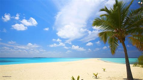 Backgrounds Beach Image