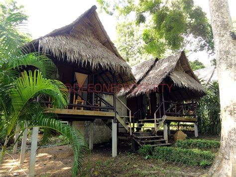 Tropical Garden View Bungalow For Rent In Koh Chang