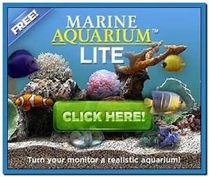 Marine aquarium lite screensaver - Download free