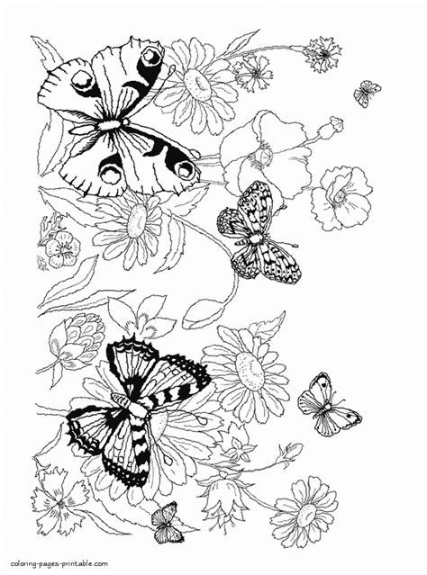 coloring pages flowers  butterflies coloring pages printablecom