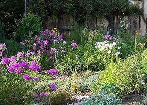 Cottage Garten Anlegen : englischer garten cottagegarten mit stauden und phlox ~ Orissabook.com Haus und Dekorationen