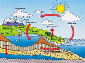 A Lot Of Diagrams Explaining The Water Cycle Make It Look