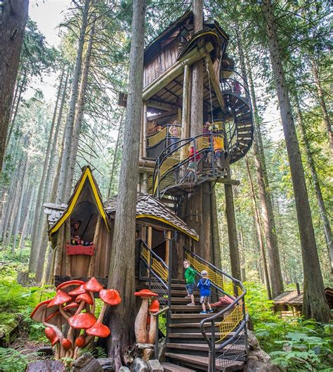 dream treehouses   canada explore awesome activities fun facts cbc kids