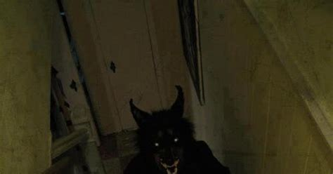 ghost hunting theories   dogmans daddy