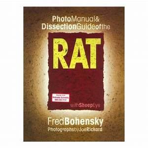 Photo Manual  U0026 Dissection Guide Of The Rat