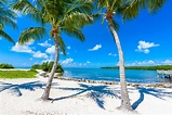 6 'Must-Sees' in the Keys This Winter – Tranquility Bay ...