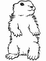 Groundhog Coloring Pages Preschool Standing Ground Printable Sheets Clipart Groundhogs Happy Activities Print Hog Primarygames Crafts Toddlers Activity Ebook Colouring sketch template