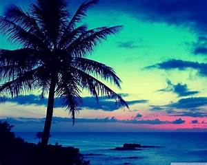 Beautiful tropical island sunrise - Hawaii   Tropical ...