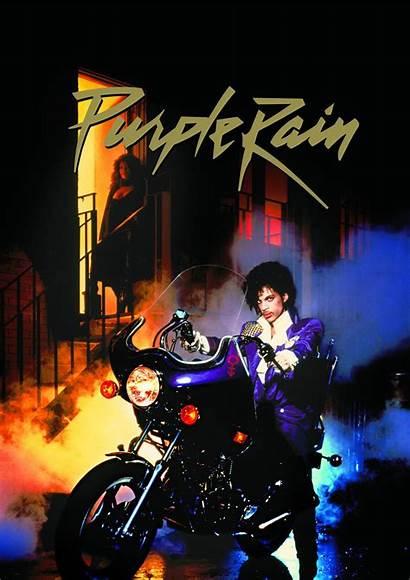 Rain Purple Prince Party Foxes Garbage Fleet