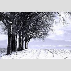 Endlich Mal Wieder Zeit Zum Fotografieren (forum Für