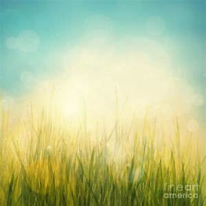 Spring Or Summer Abstract Season Nature Background Digital ...
