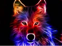 DarkCruz360 images Wolf Art HD wallpaper and background photos    Colorful Wolf Painting