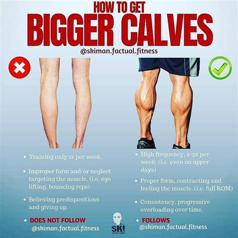 The lower extremity (the leg) consists of the hip (the thigh), the knee, the calf, the ankle and the foot. HOW TO GET BIGGER CALVES WORKOUT EXERCISES YOUR BODY Plz follow and like :@fitness__workoutput ...