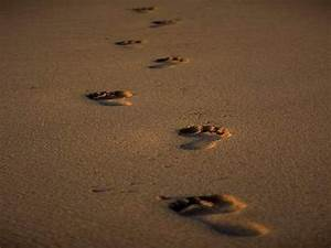 Footstep Followers of Christ | Manna From Heaven ...