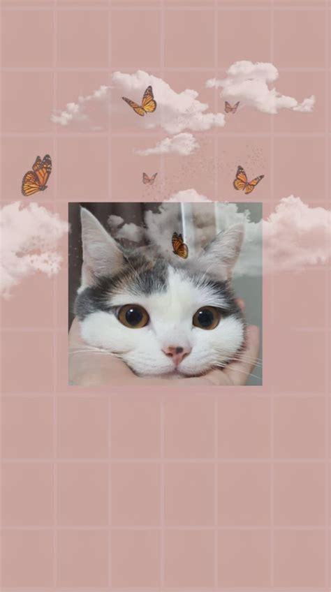 pin oleh di s gambar hewan lucu