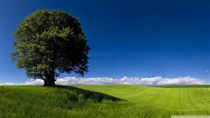 Summer Nature Landscape Wallpapers Desktop 4k Ultra