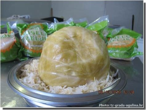 cuisiner un chou blanc cuisiner ou pas le chou blanc kiselo zelje ideoz voyages