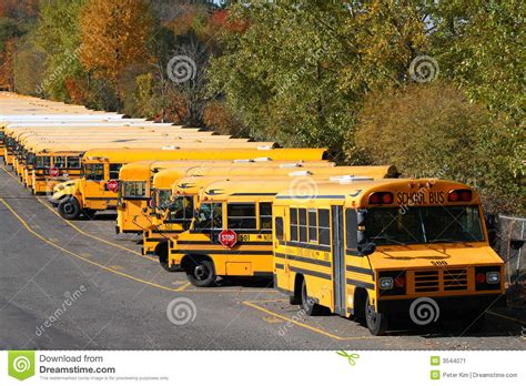 row  school buses stock image image  institution