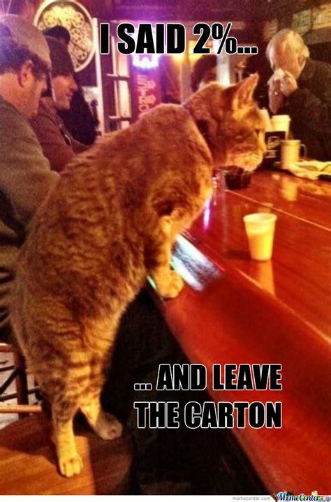 Bar Memes - cat bar by thatguyxlr meme center